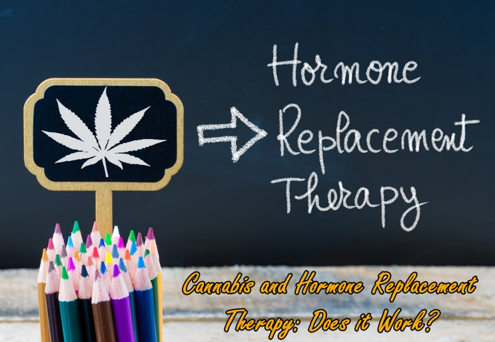 cannabis and HRT