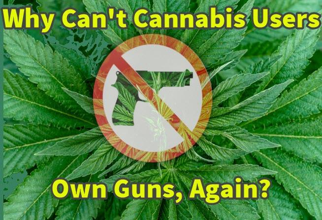 cannabis and gun ownership