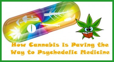 CANNABIS AND PSYCHEDLIC MEDICINE