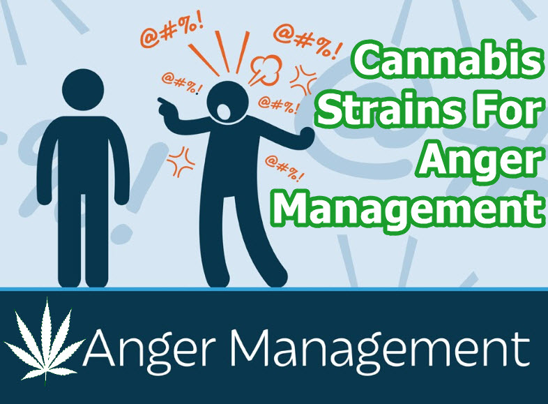 cannabis for anger managment