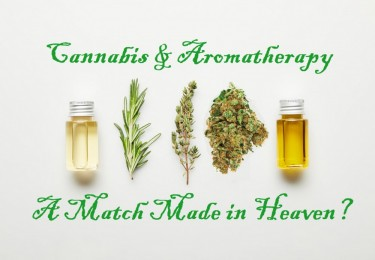 CANNABIS AND AROMATHERAPY TOGETHER
