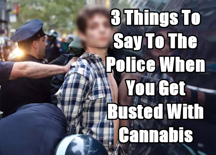 WHAT TO SAY WHEN BUSTED FOR WEED BY POLICE