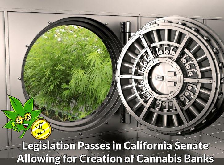 cannabis banks california