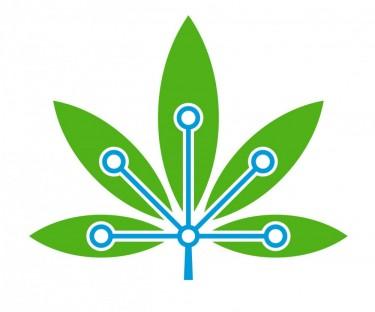 cannabis blockchain