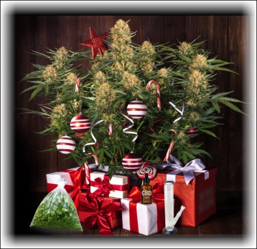 Cannabis Christmas Gifts