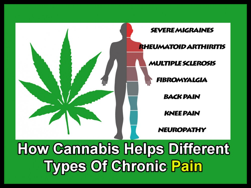 CHRONIC PAIN AND CANNABIS