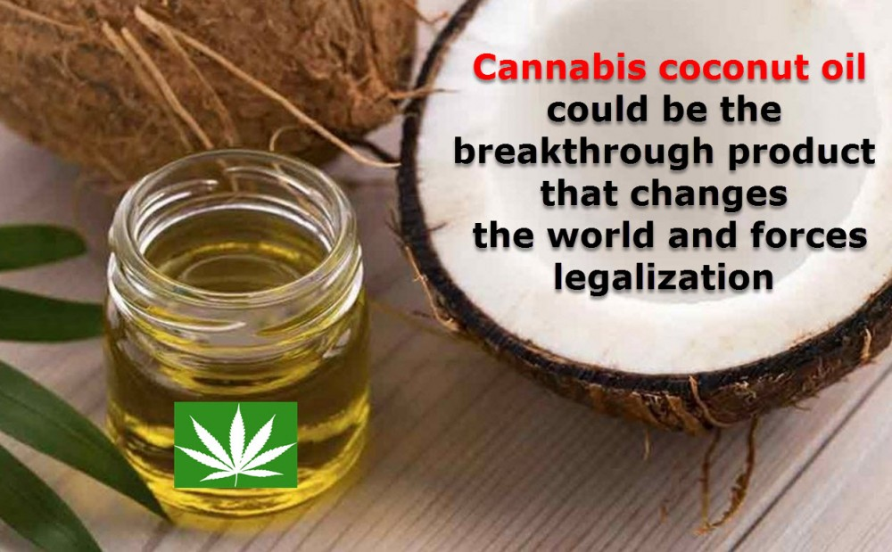 COCONUT CANNABIS OIL