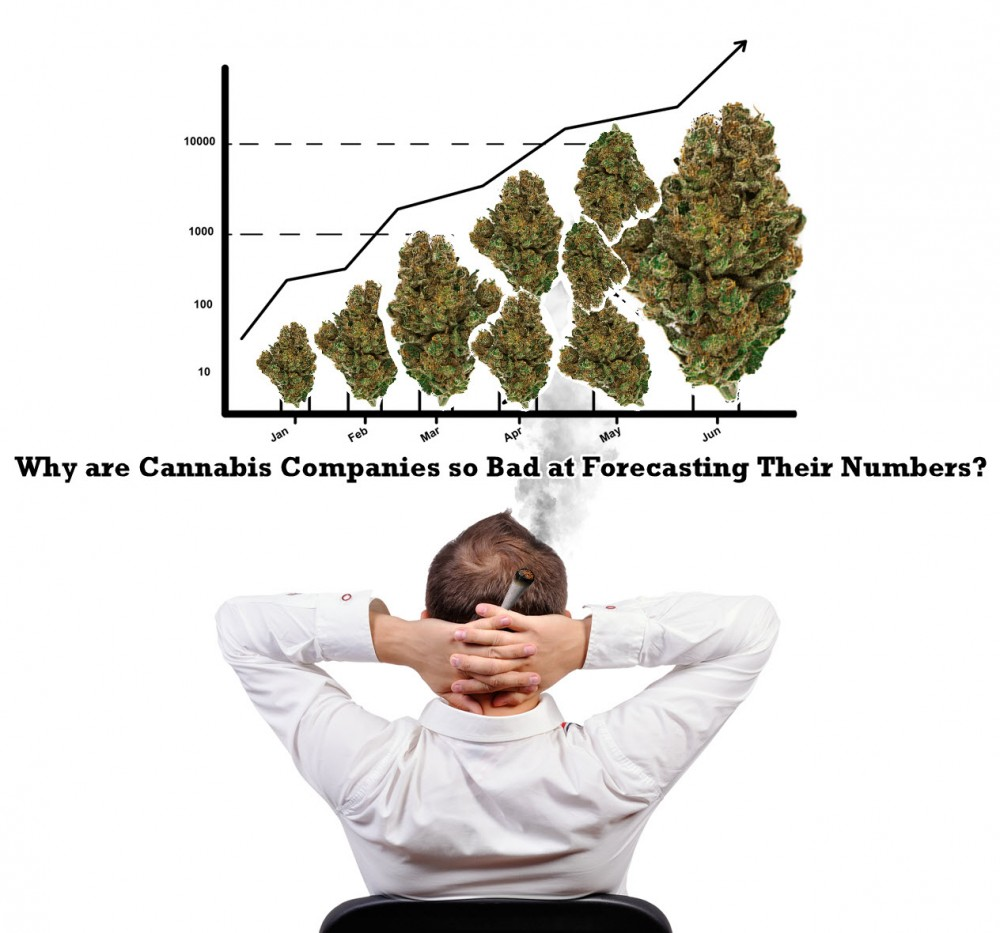 cannabis companies forecasting