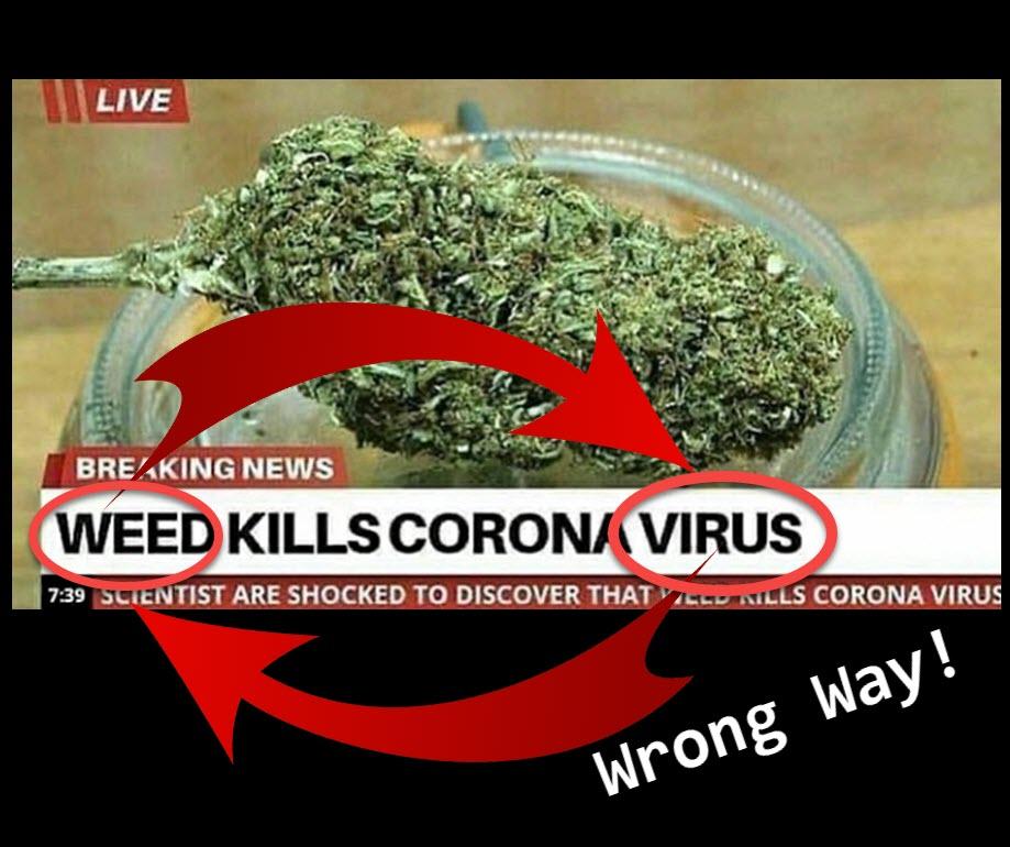 weed kills coronavirus