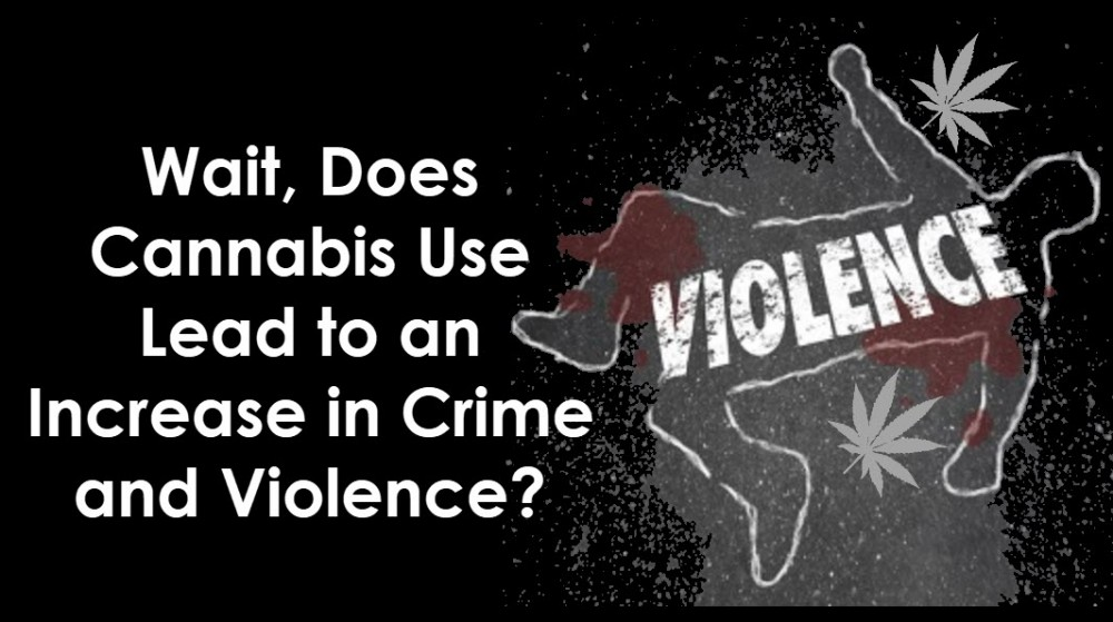 cannabis crimes and violence