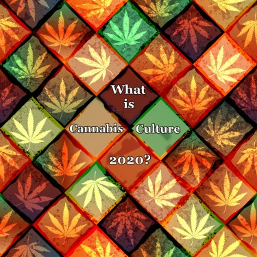 cannabis culture 2021