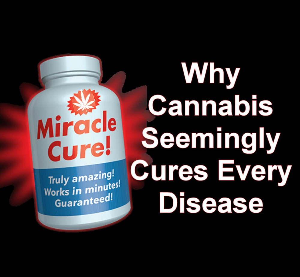 cannabis cures everything