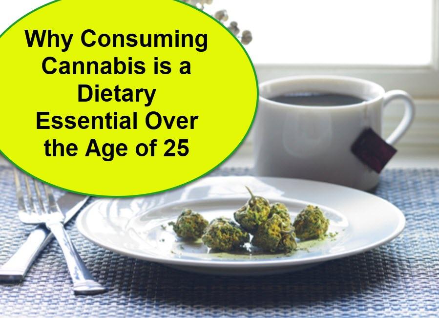 cannabis as a food diet