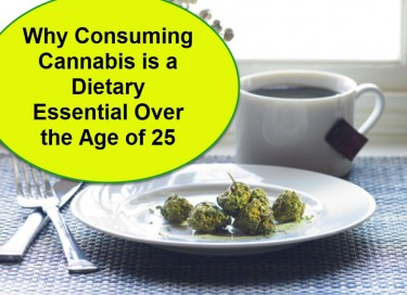 WHY EATING CANNABIS IS HEALTHY