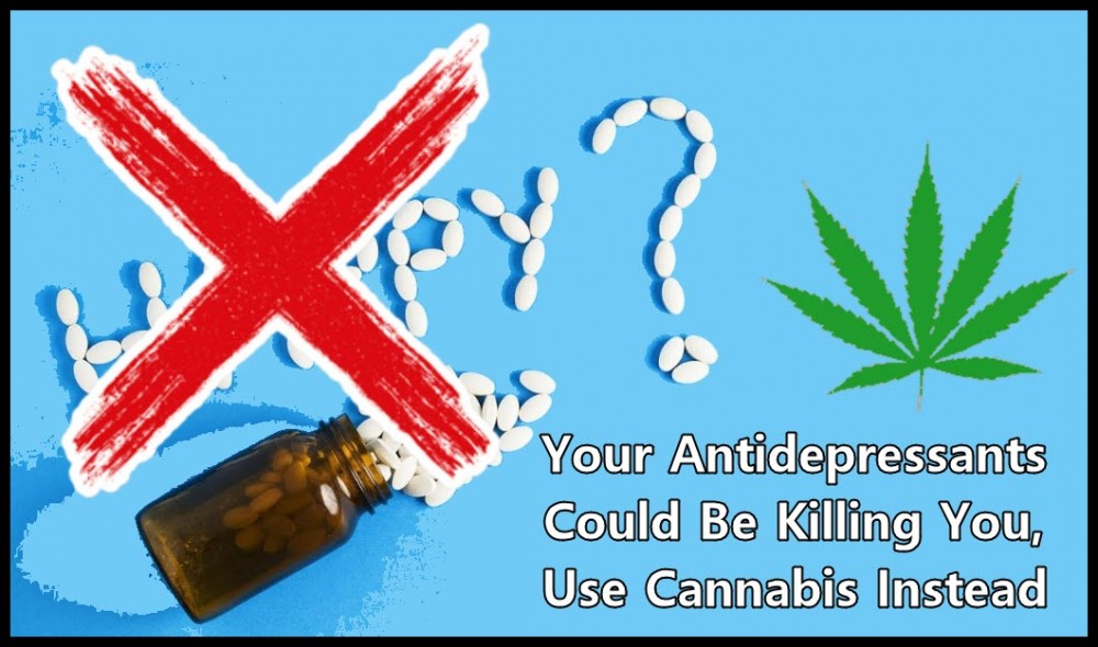cannabis for antidepressants