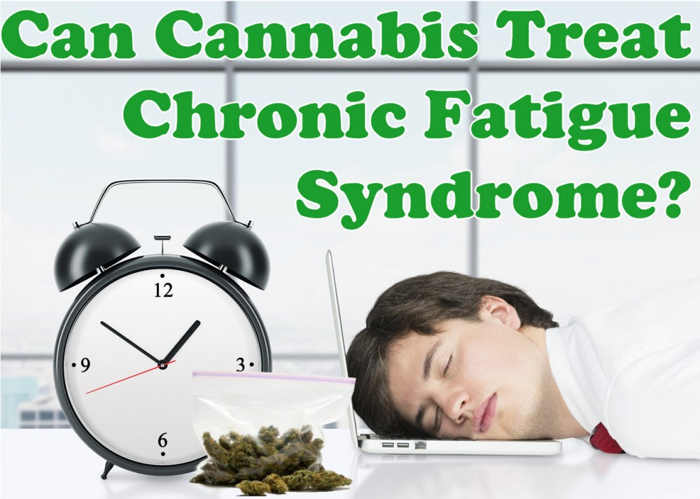 cannabis for chronic fatigue syndrome