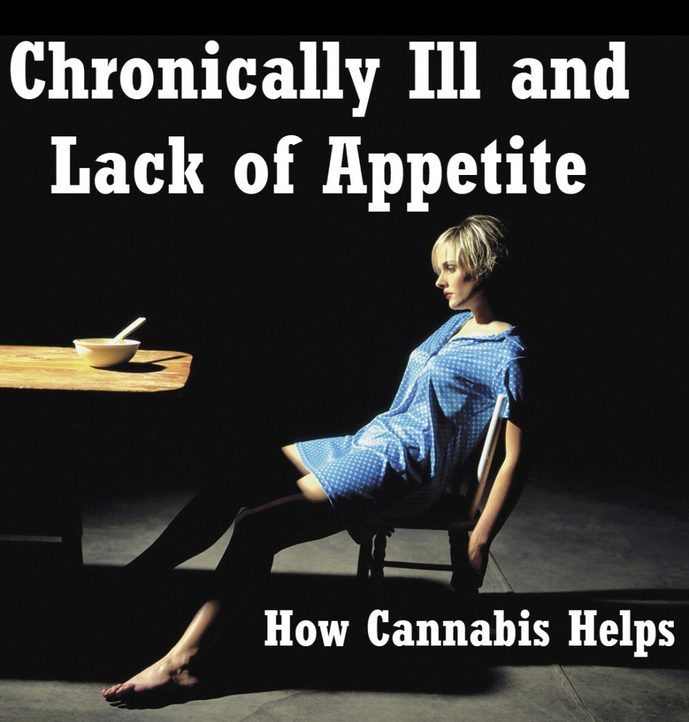 cannabis for appetite chronically ill