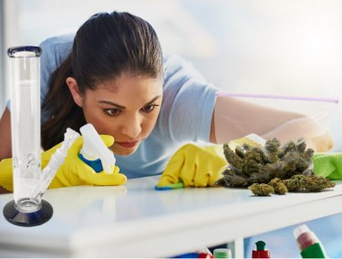 cannabis for compulsive behavior