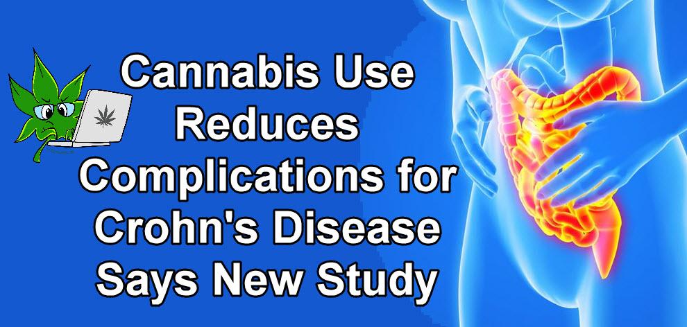 cannabis for crohn's disease