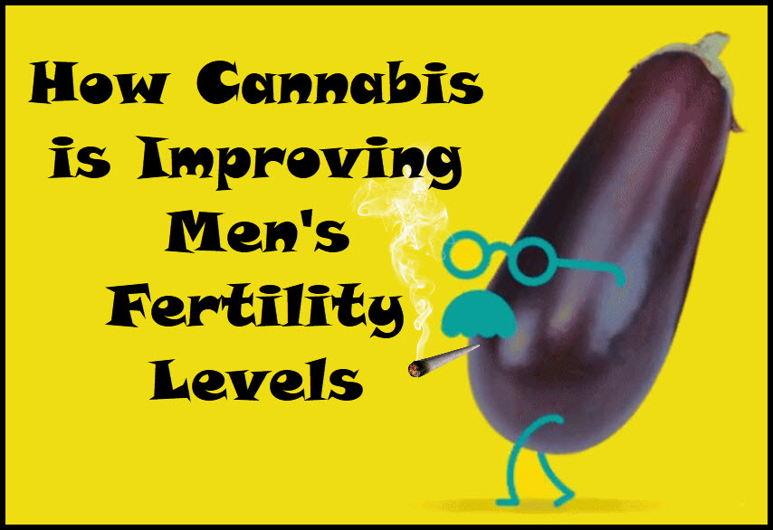 cannabisforfertility - How Do You Get Cannabis-Infused Semen? - New Study Looks if THC is Present in Sperm Tests