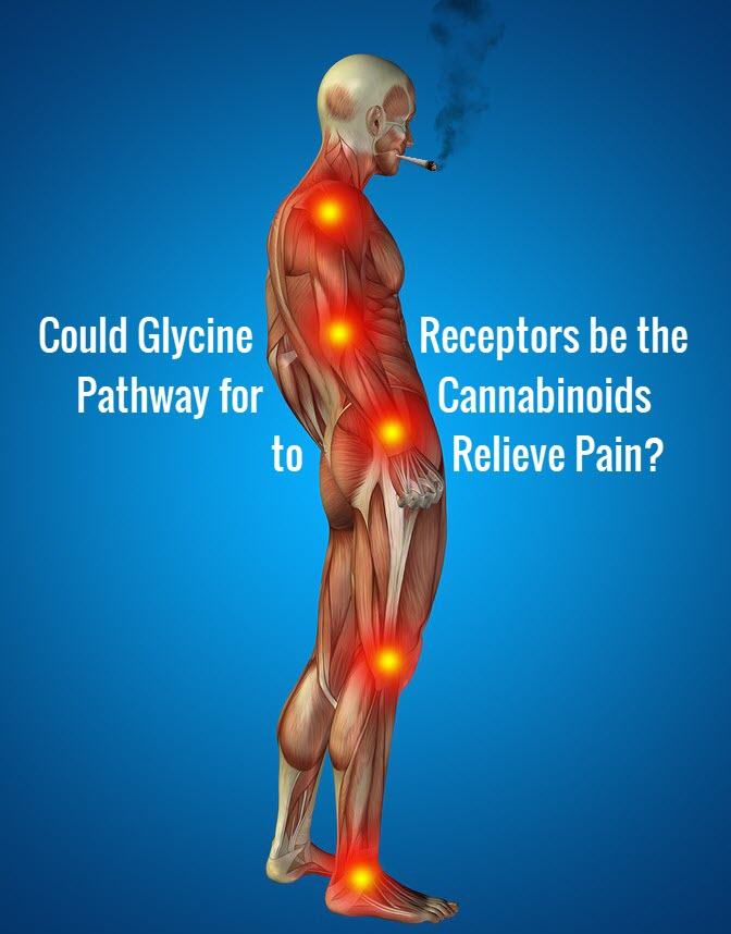 cannabis for pain relief pathways