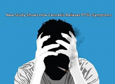 MARIJUANA FOR PTSD SYMPTOMS