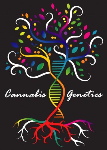 MARIJUANA GENETICS 101