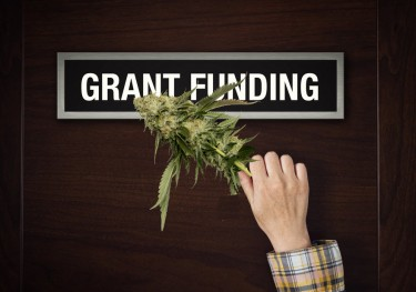 cannabis grants for the environment