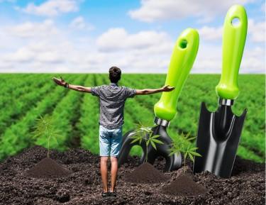 cannabis grow tools