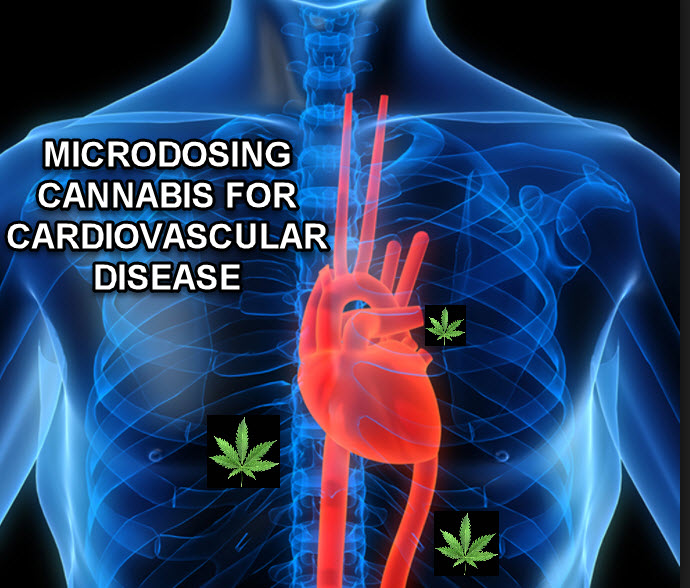 CANNABIS MICRODOSING FOR HEART HEALTH
