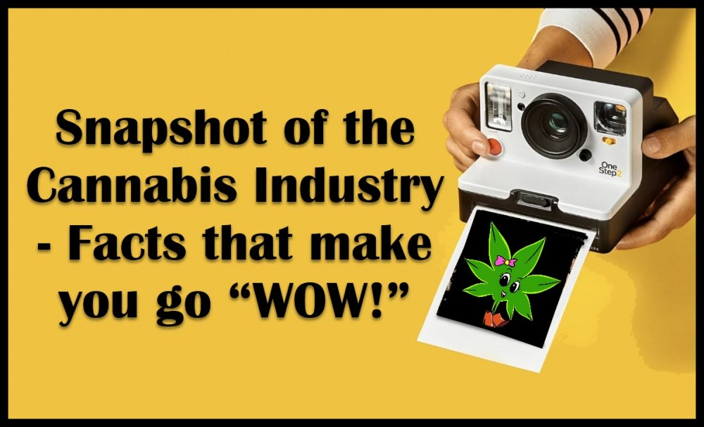 cannabis industry facts