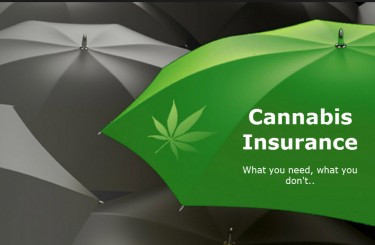 MARIJUANA CROP INSURANCE DISPENSARY
