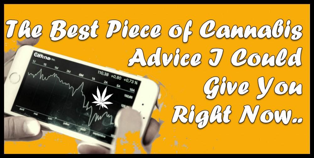best cannabis advice