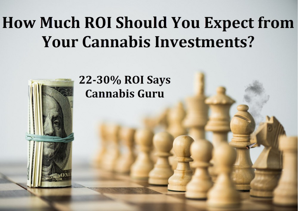 cannabis investment returns