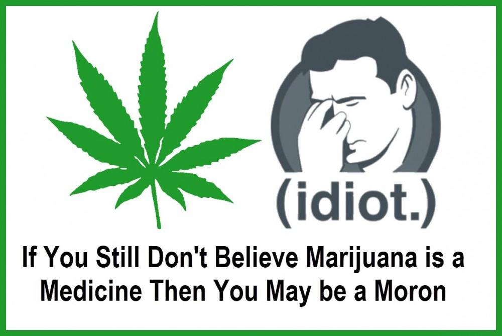 cannabis idiots