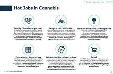 cannabis job graphic