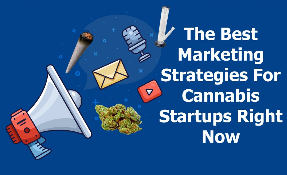 CANNABIS MARKETING PLANS FOR STARTUPS