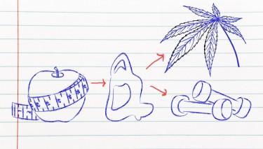 cannabis for mind body health