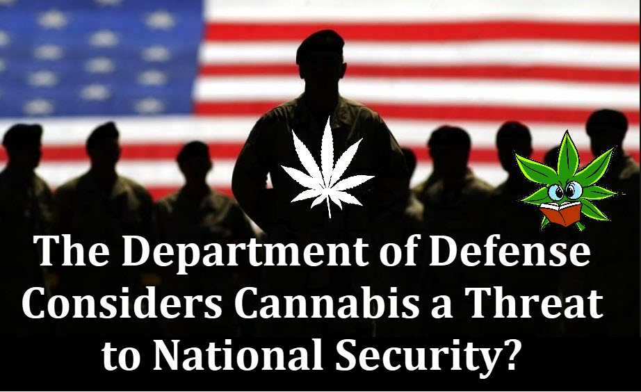 cannabis national security threat