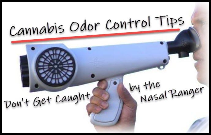 marijuana odor control tips nasal ranger