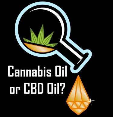 cannabis or cbd oil