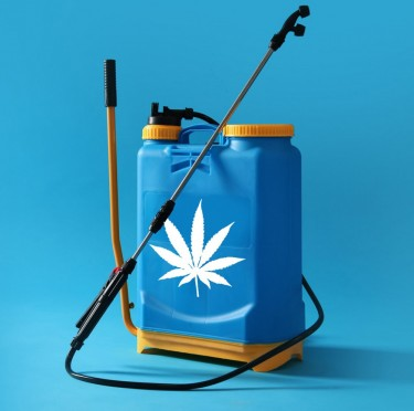 CANNABIS PESTICIDES OR NOT