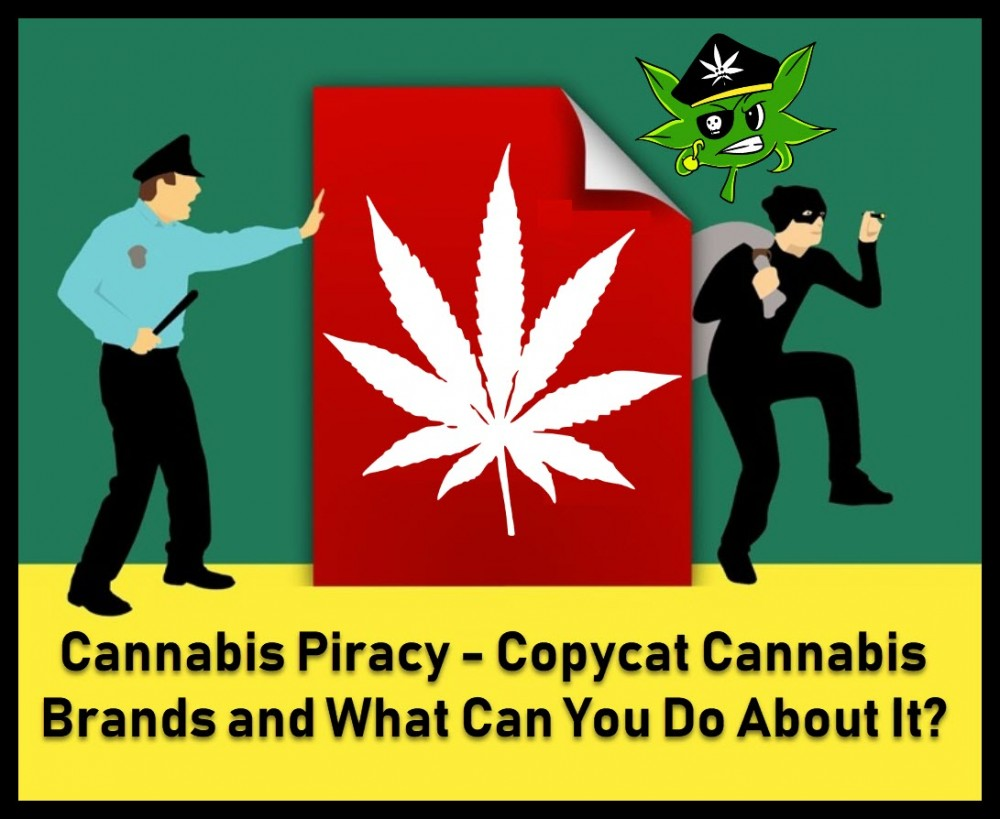 cannabis piracy