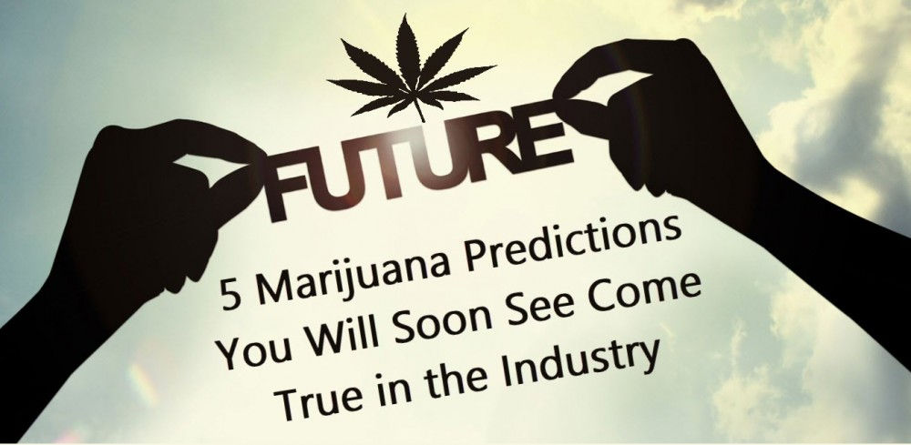 CANNABIS FUTURE PREDICTIONS