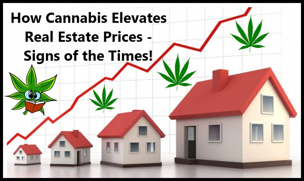 CANNABIS REAL ESTATE PRICES