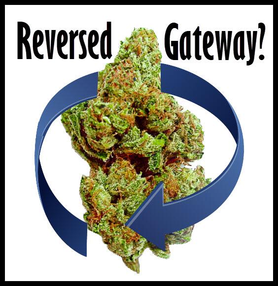 cannabisreveresedgateway - Cannabis as a Reverse Gateway Drug? (New Study)