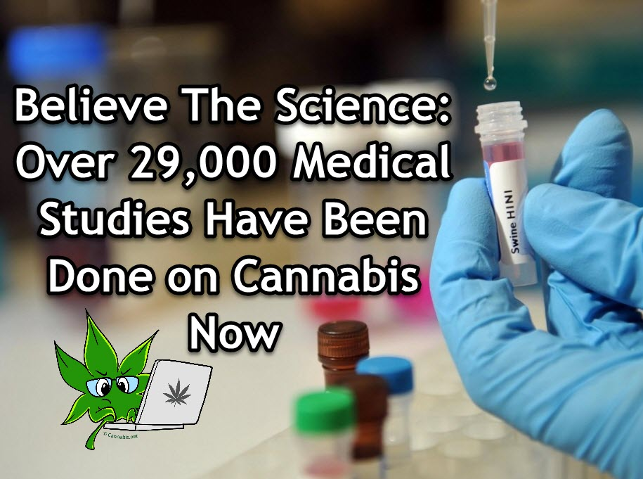 SCIENTIFIC STUDIES ON CANNABIS