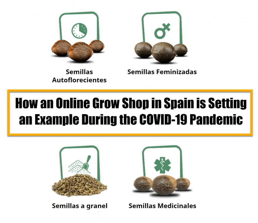 cannabis seed stores in Spain