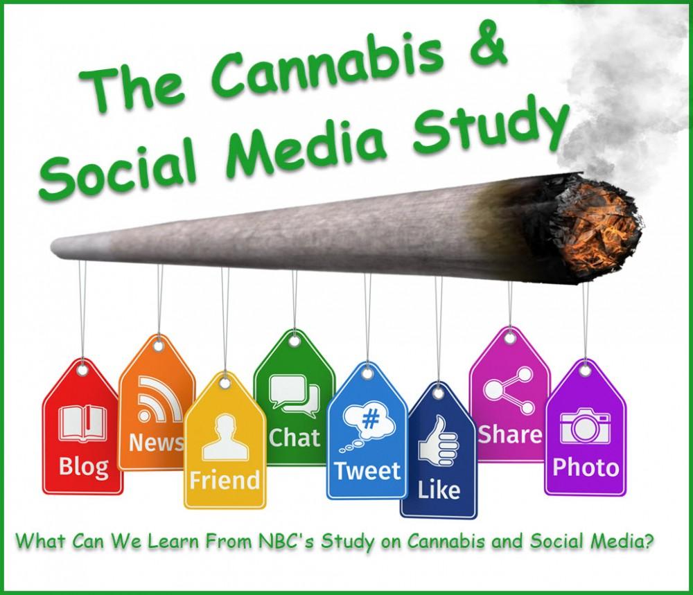 cannabis social media study