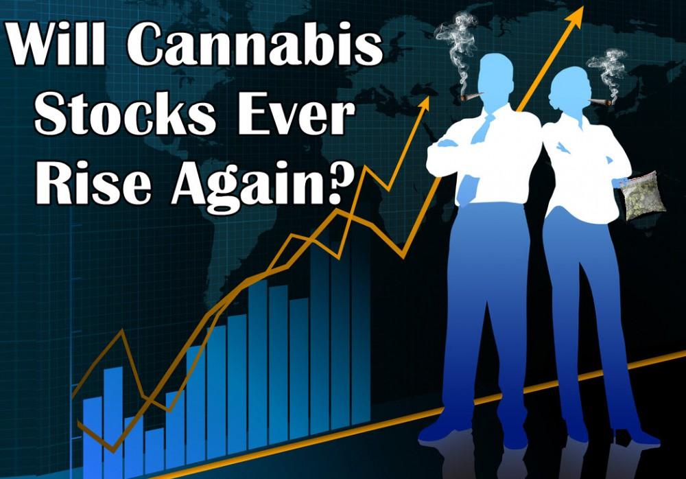 WILL CANNABIS STOCKS GO UP AGAIN